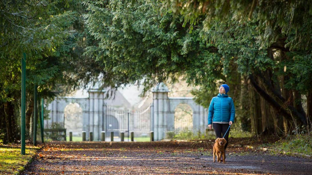 Woman walking a dog around Portumna Castle and Gardens in Galway