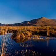 Image of Wild Nephin Ballycroy National Park