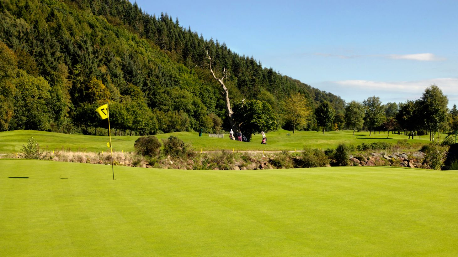 Visit Woodenbridge Golf Club in County Wicklow.