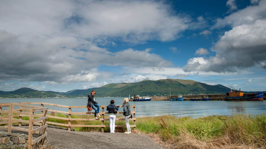 A group of people beside a fence on the Great Eastern greenway, Carlingford, Louth