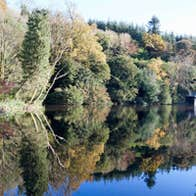 a wonder view of one of the lakes at the Castlecomer Discovery Park