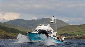 Sliabh Liag Boat Tours