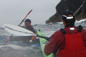 Shearwater Sea Kayaking