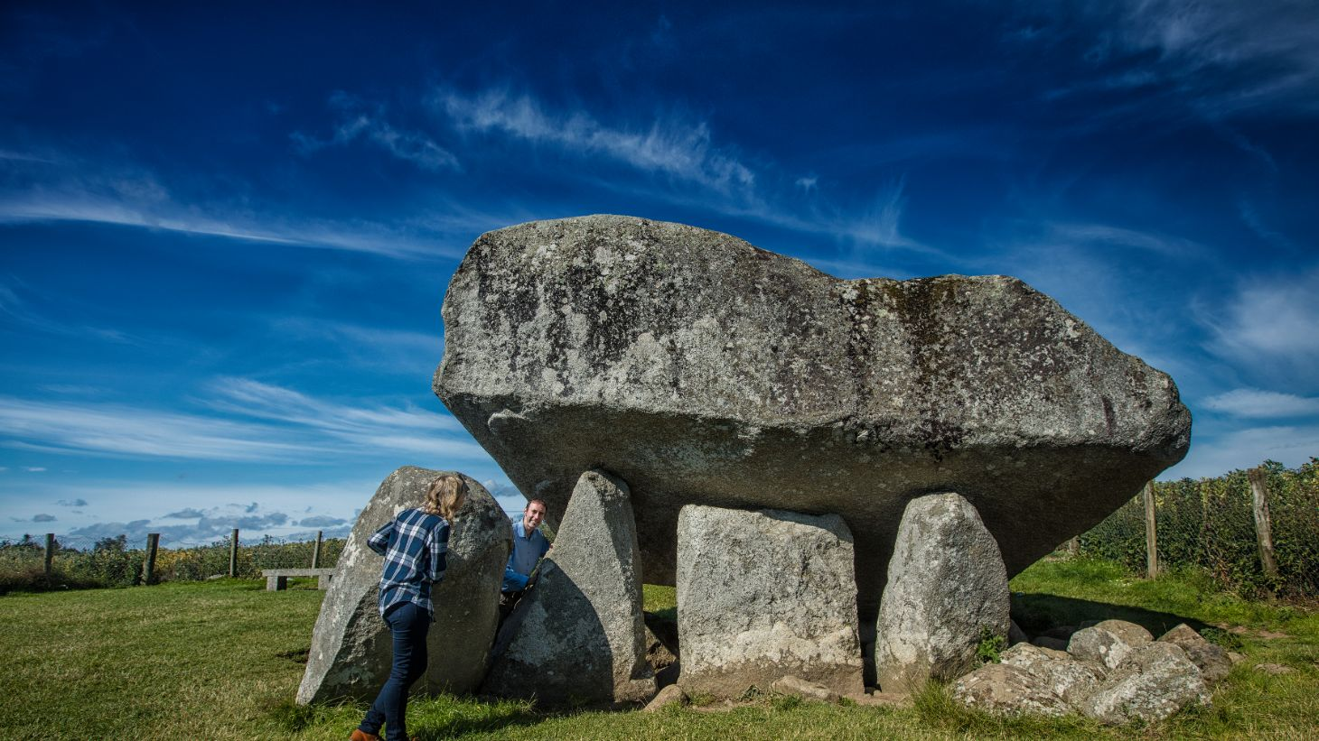 See the impressive and ancient Brownshill Dolmen.