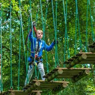 A young boy at the start of a rope bridge high in the treetops