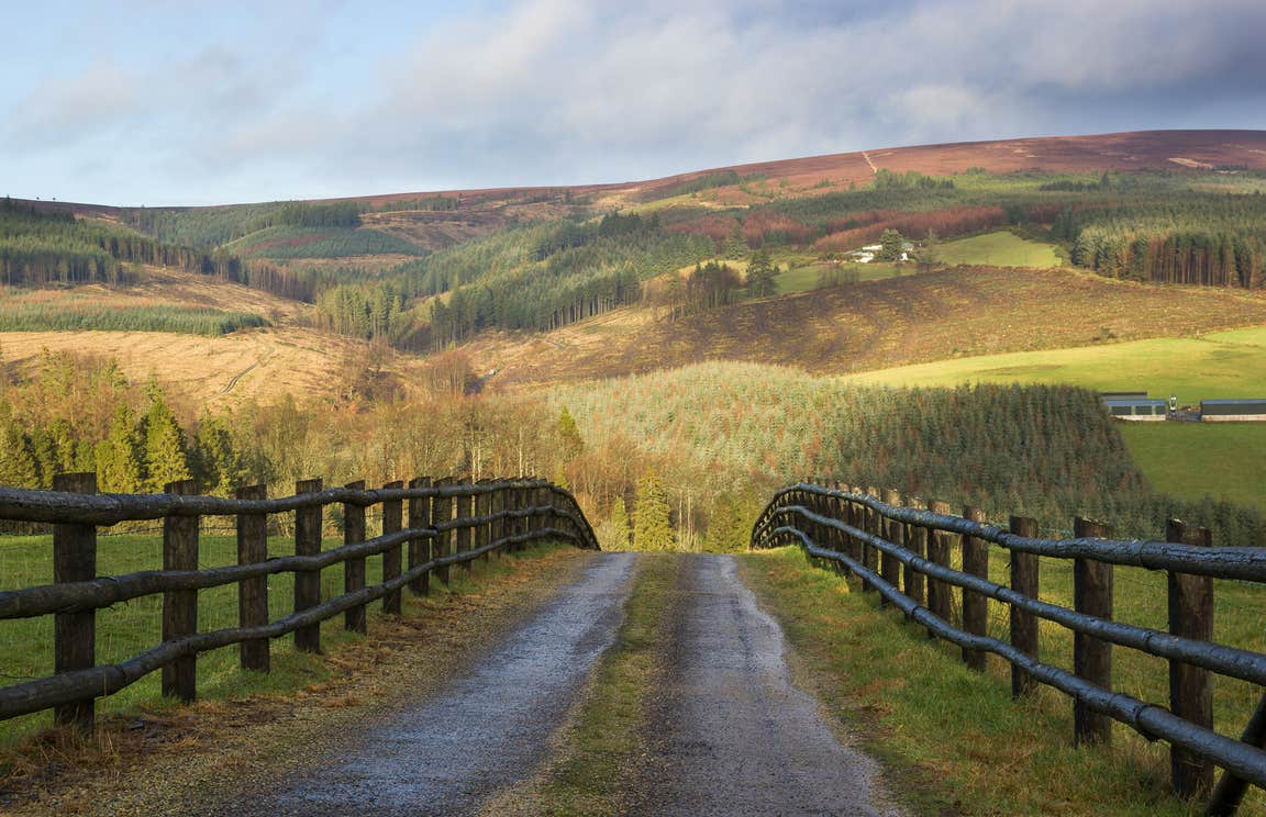 A fenced path leading to the stunning Slieve Bloom Mountains