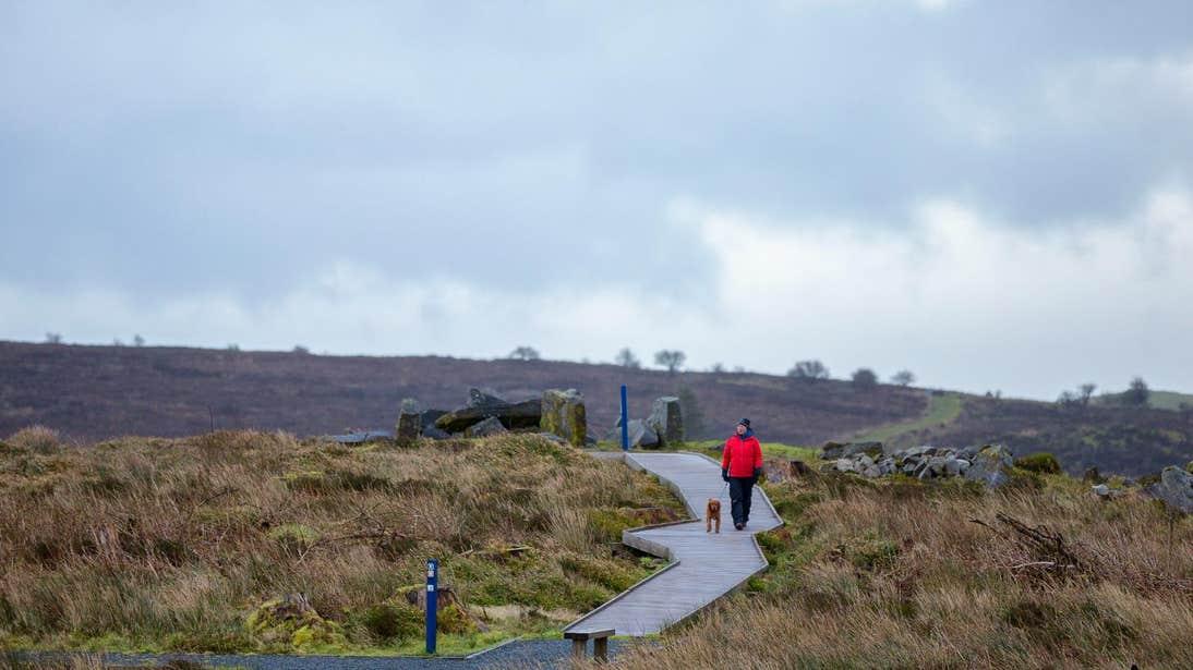 Woman walking a dog in Cavan Burren Park, Cavan
