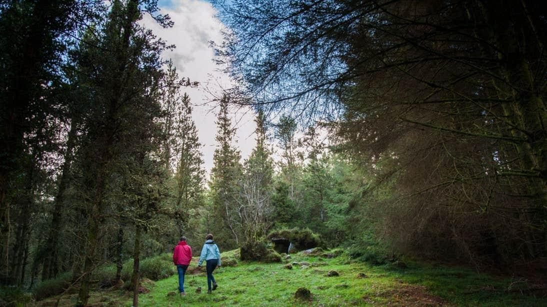 Two people walking through Cavan Burren Park, County Cavan