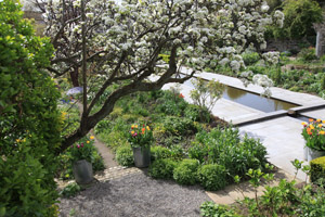 The Dillon Garden