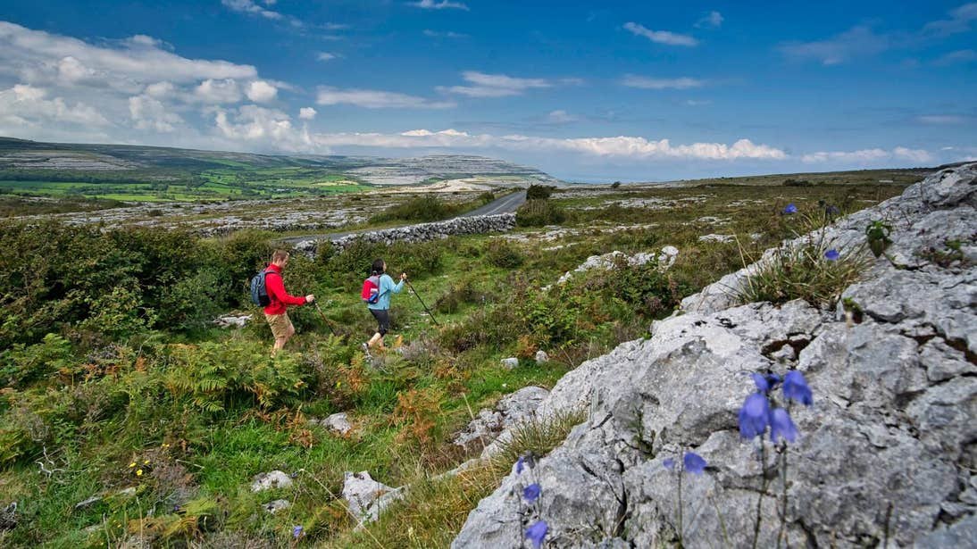Two people hiking through green fields in The Burren, Co Clare