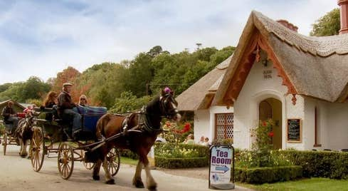 Jaunting car outside Tea Rooms