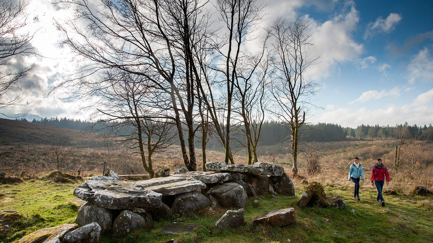 Explore the unique landscape of Cavan Burren Park.