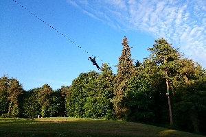 Zipit Tibradden Wood