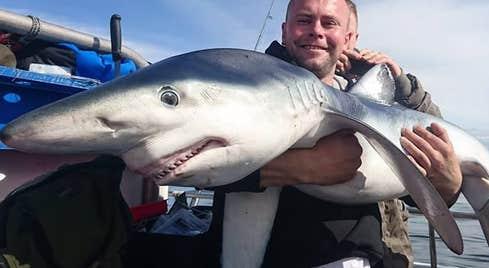 Man holding a blue shark