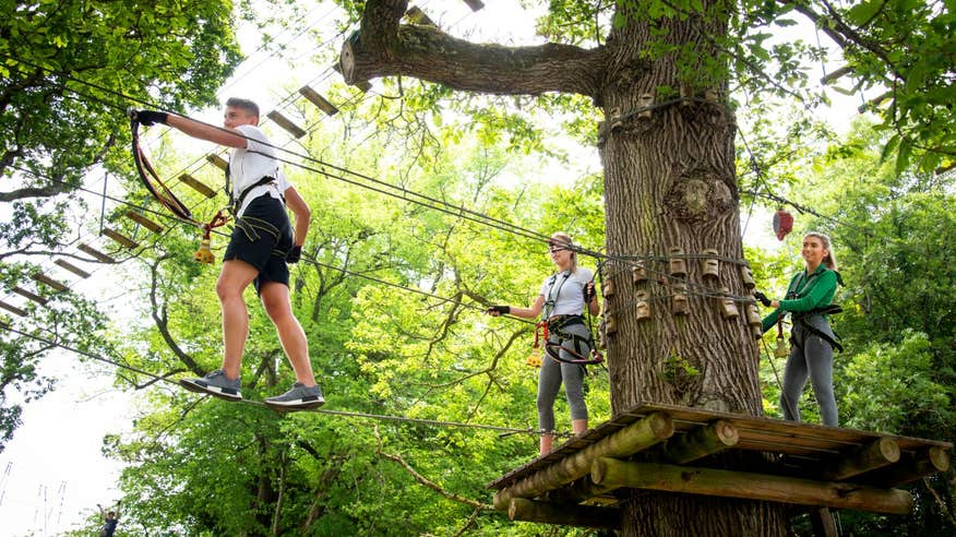 Visit one of the most unique and thrilling zipline experiences in Ireland at Lough Key Forest Park.