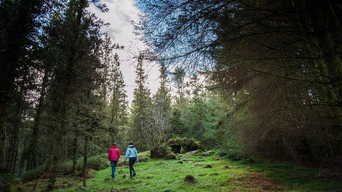 Two people walking through the forest in Cavan Burren Park
