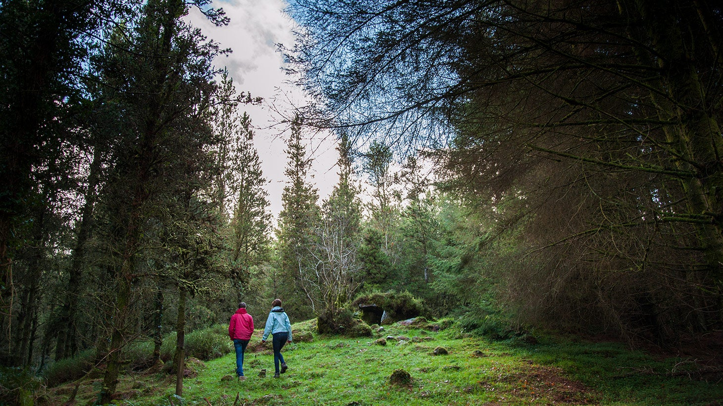 Explore the prehistoric landscape of Cavan Burren Park.