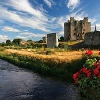 Image of Trim Castle