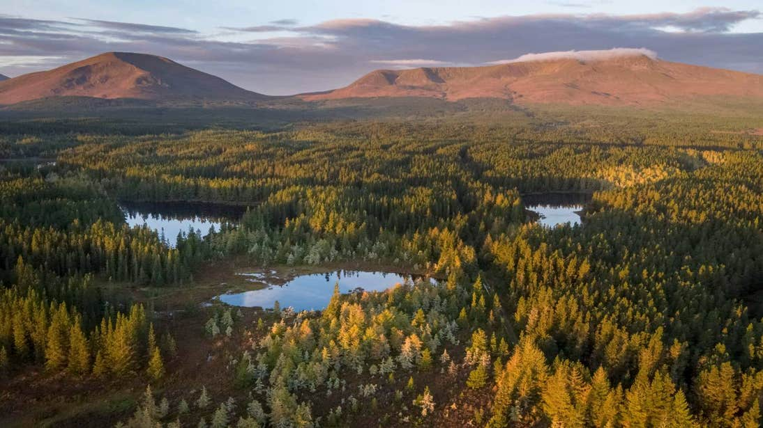 Sunset on mountains, forest and lakes at Wild Nephin Ballycroy National Park, Mayo