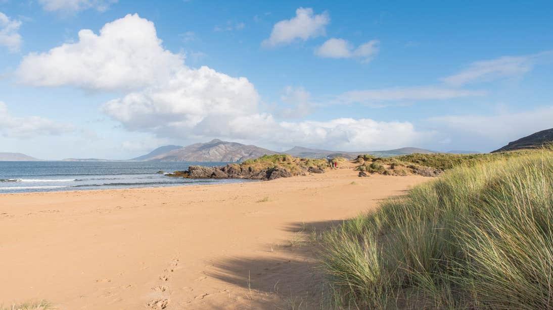 Golden sandy beach and grassy dunes in Ballymastocker, Donegal