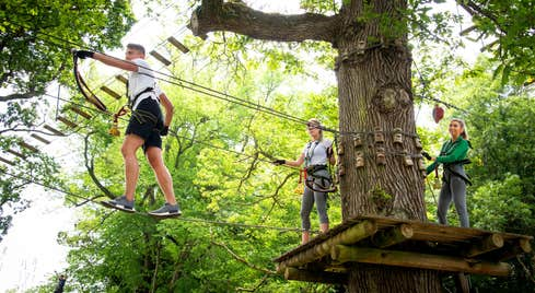 People wearing safety gear walking across ropes at Lough Key Forest and Activity Park, Roscommon