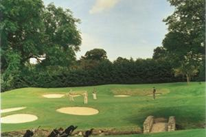 Edmondstown Golf Club