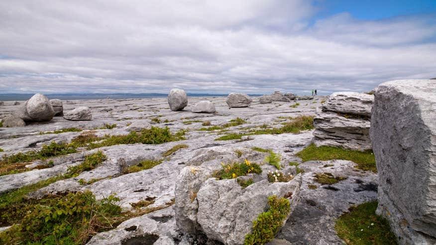Walk through the truly unique Burren on the Black Head Looped Walk
