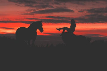 Image of a horse and a girl at sunset in Tullamore in County Offaly