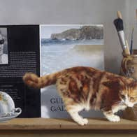 Patrick Hennessy, Self Portrait and Cat, 1978. Collection Crawford Art Gallery, Cork. � the artist's estate.