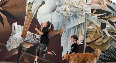 Waterford Walls Guided Art Trail Walk
