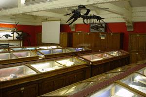 Geological Museum