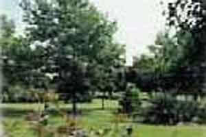 Fairview Park