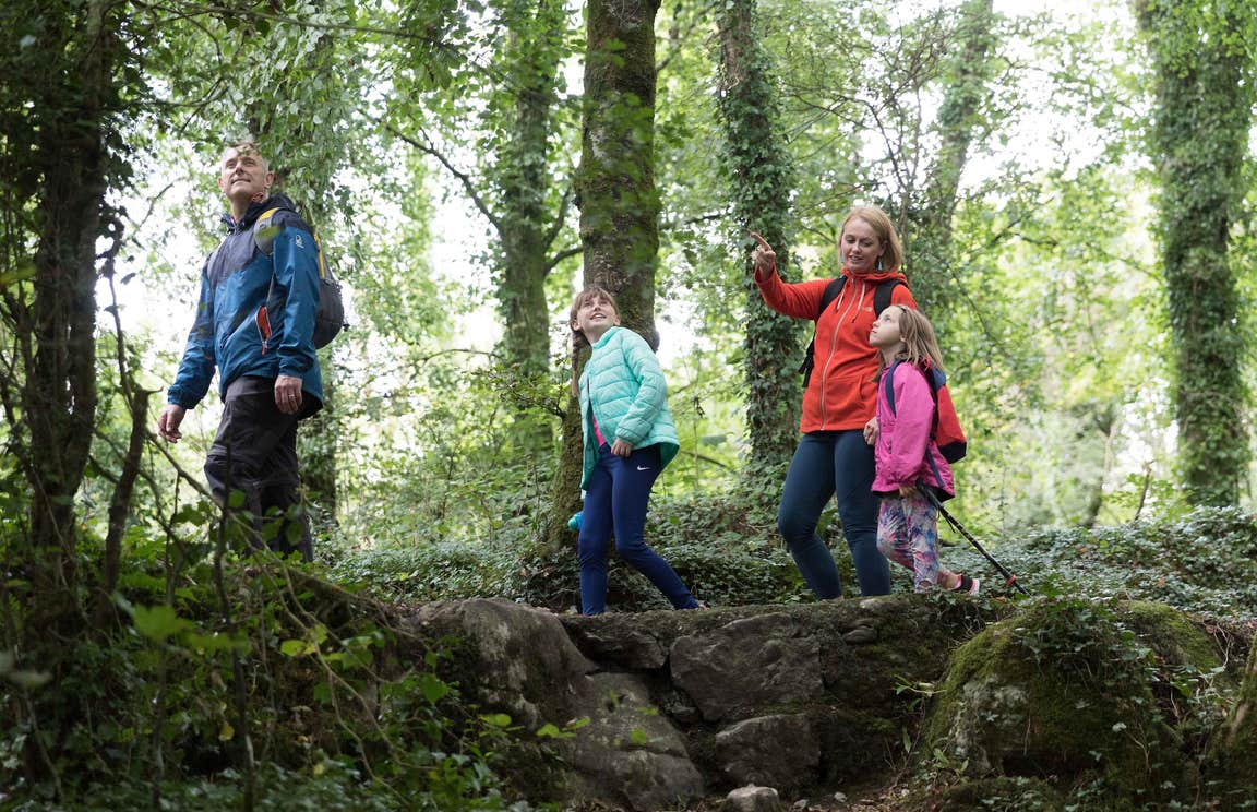 Family walking through a forest at Dromore Wood Nature Reserve in Ennis, Co Clare.