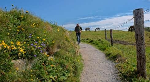 Doolin Cliff Walk Guided Tour