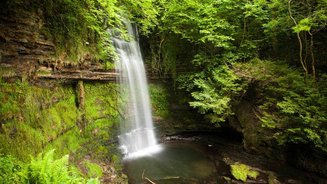 A view of water cascading down rich greenery at Glencar Waterfall, Leitrim
