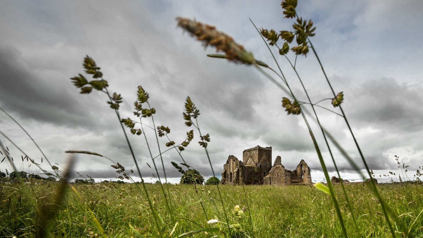 See the mighty Hore Abbey on your trip to Tipp.