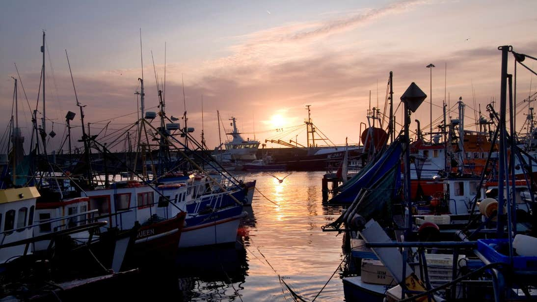 Boats in a harbour at sunset in Dunmore East, Waterford