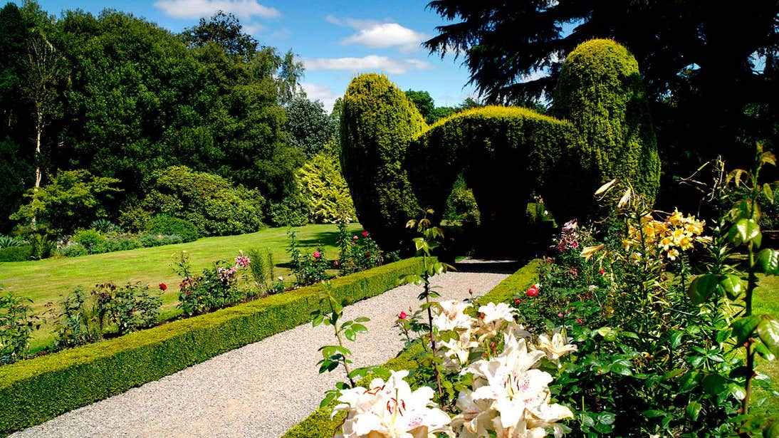Flowers and topiary in Altamont Gardens in County Carlow