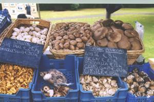 Mespil Road Farmers Market