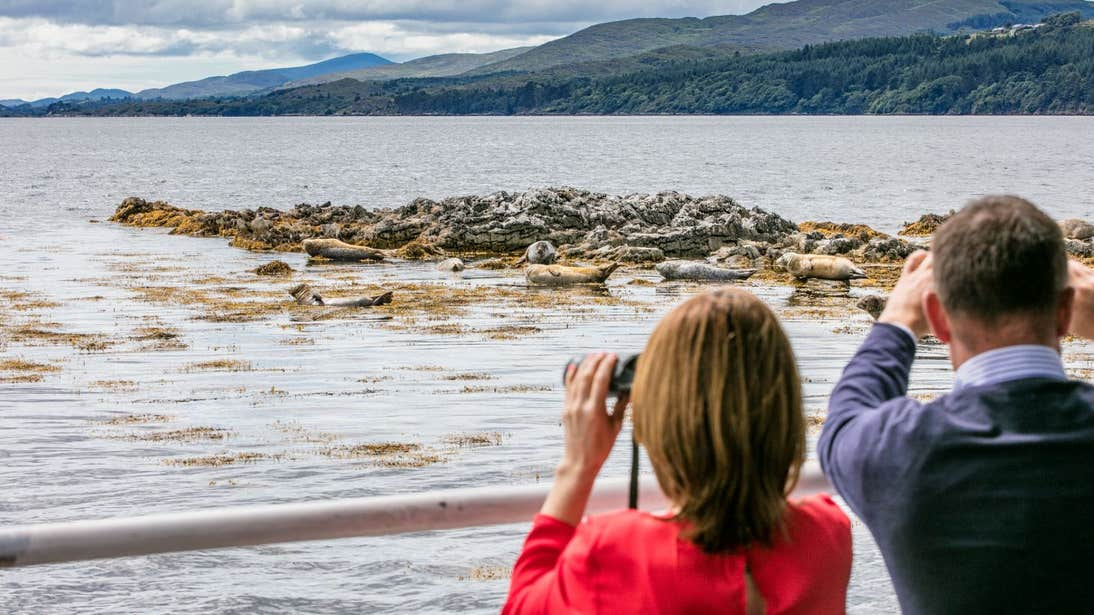 Two people seal watching, Kenmare, Kerry
