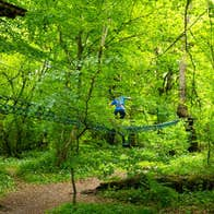 Ziplining at Lough key Forest and Activity Park, Co. Roscommon