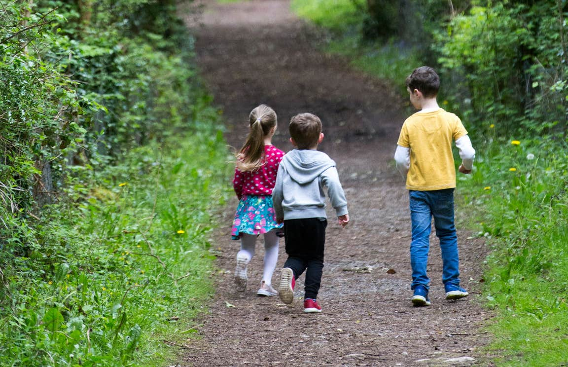 Three children walking down a woodland trail