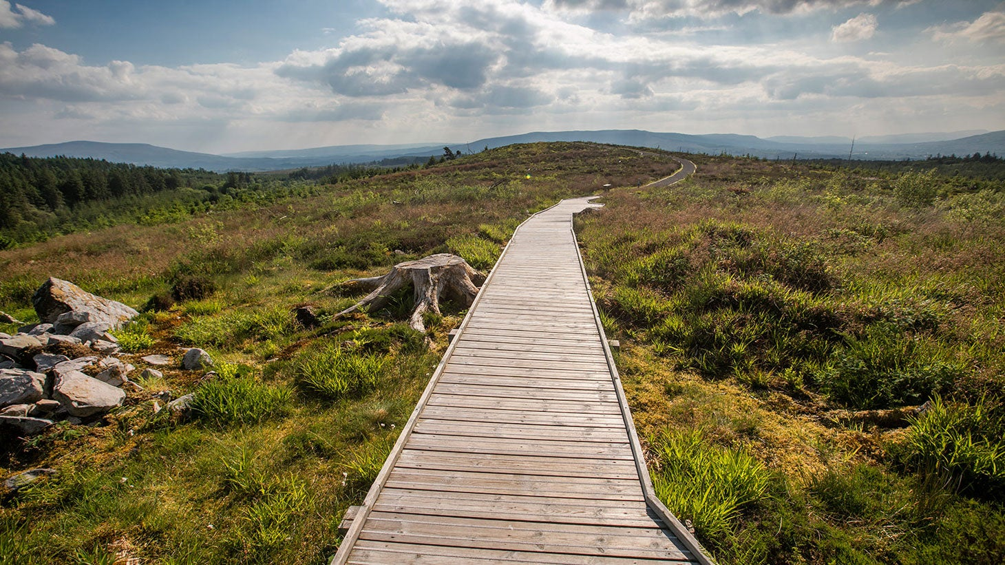Wander through amazing landscapes on the Beara Breifne Way.