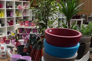 Urban Plant Life Garden Centre