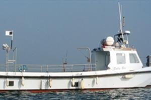 Howth-Boats