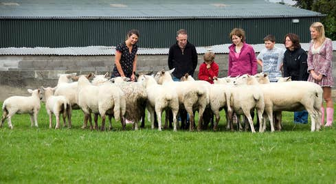Visitors to Causey farm County Meath looking at a flock of sheep and lambs