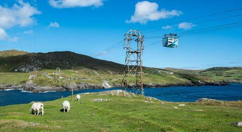 View of Dursey Island Cable Car and field with sheep, Beara Peninsula, County Cork