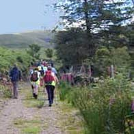 Image of Nire Valley Trails - Coumlara Looped Walk