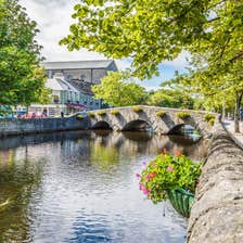 Green trees hanging over a river in Westport Town.