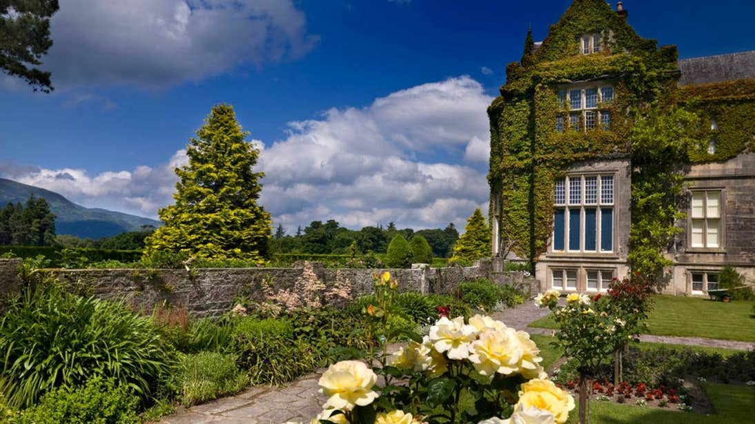 Flowers and greenery in the gardens at Muckross House